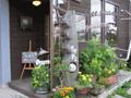 HOME ROAST COFFEE 夢豆
